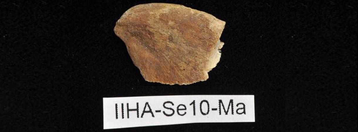 Kala oli keskiajalla pääasiallinen ravinnonlähde Pohjois-Pohjanmaan rannikolla