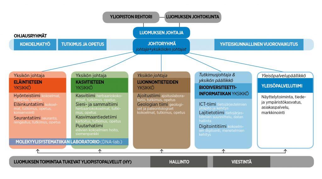 Luomuksen organisaation rakenne